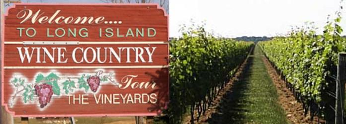 Vineyard Weekly Specials Long Island